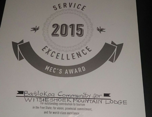 MEC's Service Excellence Award | Lilizela Awards